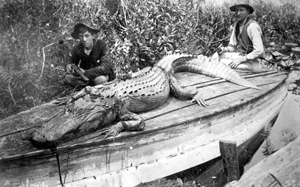 Two hunters with alligator: Ocala, Florida (1890s)