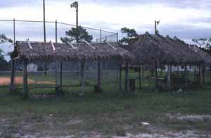 Seminole Indian chickee huts by baseball field at the Big Cypress Indian Reservation (ca. 1980)