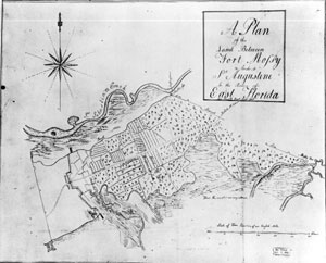 Plan of the land between Fort Mossy (Mose) and Saint Augustine