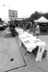 T-shirt selling on Monroe street during the 2000 presidential election vote dispute (2000)