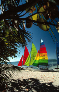 Hobie Cat sailboats on Smathers Beach at the end of South Roosevelt Boulevard: Key West, Florida (1989)