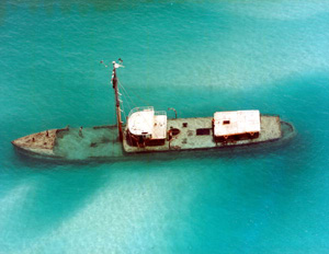 "Aerial view of the ""Arbutus"": Key West, Florida (1985)"