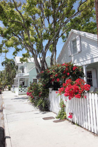 Scenic view showing conch house at 923 Southard Street: Key West, Florida (2006)