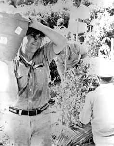 State Senator Bob Graham during workday as a tomato picker for Six L's Farms: Naples, Florida (1977)