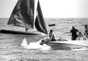 Filming of &quot;Jaws II&quot; (1977)