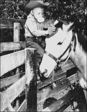 Young rider, Patty Blackmon grooms her horse Buck: Ocala, Florida (1948)