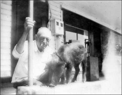 George Holton with Billy Hartfield's pet razor back pig: Panacea, Florida (195-?)