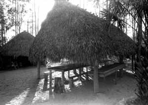 A Chickee, typical Seminole housing in South Florida: Big Cypress Seminole Indian Reservation (1985)