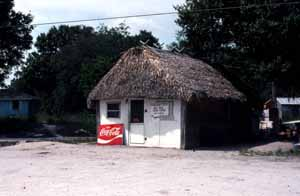 Chickee snack building: Big Cypress Seminole Indian Reservation (c. 1970s)