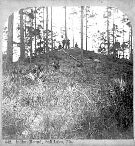 Earthen mound in Salt Lake, Florida (1900s)