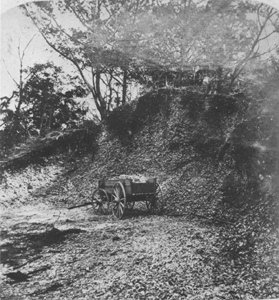 Pre-Columbian shell mound on the East Coast (c. 1900)