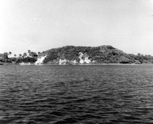 Turtle Mound near New Smyrna Beach, Florida (1930s)