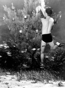 Bud Bassette decorating an underwater Christmas tree at Weeki Wachee (1948)