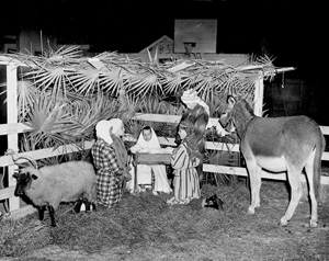 Living nativity scene: Lake City, Florida (19--)