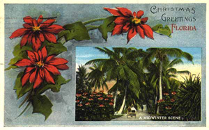 Christmas greetings from Florida (1919)