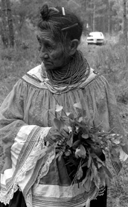 Susie Billie collecting medicinal plants and herbs (1985)