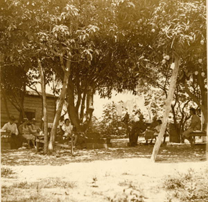 1. The Roberts, who migrated to Riviera from the Bahamas in 1915, sit daily under the mango trees in the back yard…