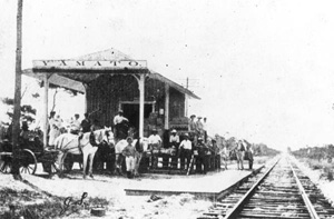 Farmers at railroad depot: Yamato, Florida (ca. 1911)