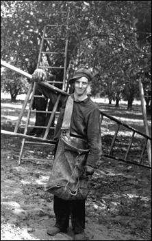 Migrant orange picker holding ladder: Polk County, Florida (1937)