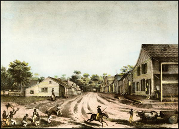 Lithograph of a residential street scene: Tallahassee, Florida (1839)