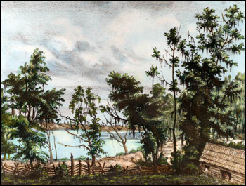 Lithograph of a plantation on Lake Lafayette: Leon County Florida (1839)