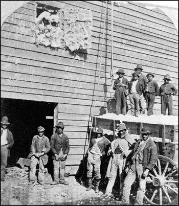 Laborers waiting for a team to arrive at a cotton gin: northern Florida (early 20th century)