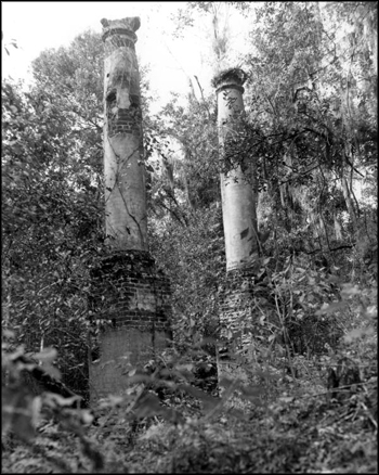 Ruins of the Verdura Plantation: Leon County, Florida (20th century)