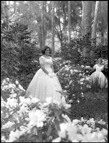 Young women pose for a photograph at Maclay Gardens State Park: Tallahassee, Florida (1968)