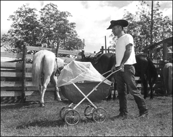 Cowboy pushes a baby carriage through the corral: Bonifay, Florida (1949)