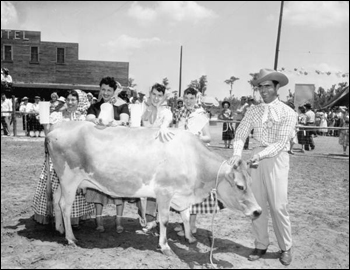 Dairymaids and cowhand with cow at Tupperware Jubilee (1955)