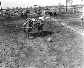 Cowboys play polo: New Smyrna Beach, Florida (1954)