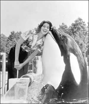 Killer whale Shamu &quot;kisses&quot; a woman in Sea World: Orlando, Florida