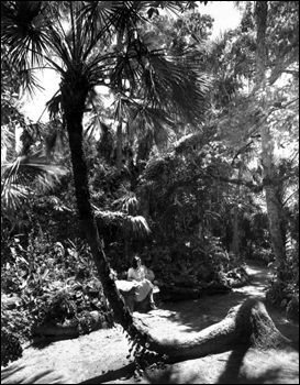 A young woman taking a break at McKee Jungle Gardens: Vero Beach, Florida (194-)