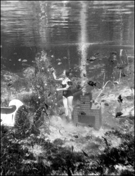 Underwater Christmas at Rainbow Springs: Rainbow Springs, Florida (1953)