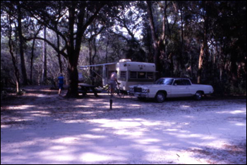 View showing area for camping at the Hillsborough River State Park: Thonotosassa, Florida (197-)