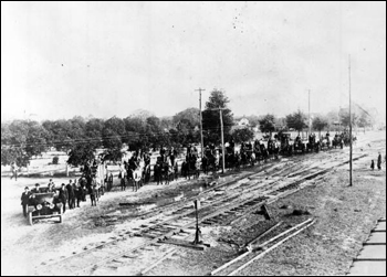 Fifteen wagonloads of oranges: Umatilla, Florida (191_)