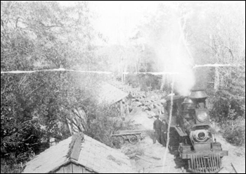 Pensacola and Andalusia Railroad Company train unloading logs into Escambia River (189_)