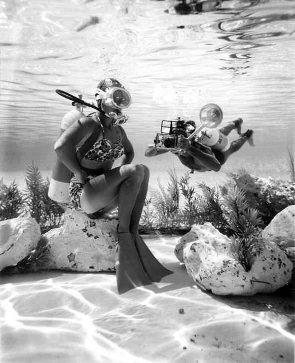 Diver and photographer at Cypress Gardens