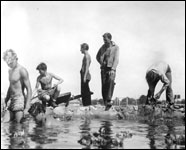 Young men building a pool at Camp Roosevelt? : Ocala, Florida (1935)
