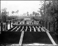 Bridge construction at Highlands Hammock State Park (1932)