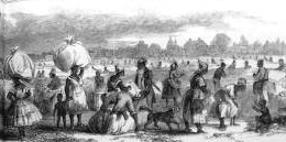 Detail from drawing depicting aspects of the cotton trade