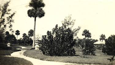 Postcard of Koreshan garden walkway, ca. 1910