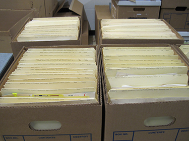 Boxes after processing