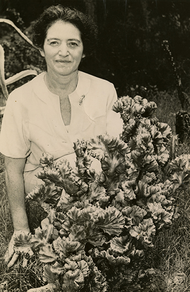 Hedwig Michel in the Koreshan garden (ca. 1960)