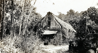 Early Koreshan log and thatch house, built ca. 1894