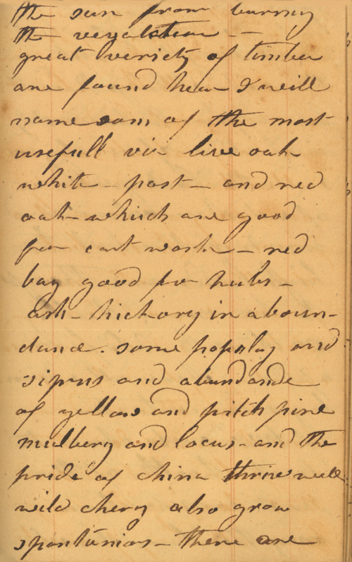 Daniel H. Wiggins 1838 Diary Entry