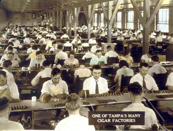 Men and women making cigars by hand: Tampa, Florida (192-)