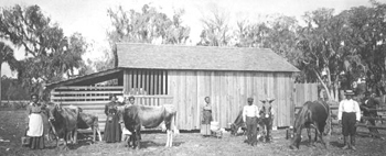 Daytona Normal and Industrial Institute at their barn (1912?)