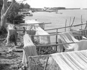 Seine nets drying at a dock: Marco Island, Florida (1959)