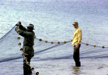 Mullet fishermen: Shell Point, Florida (1965)